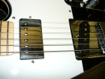 ESP Ronnie Wood Model
