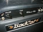 Bad Cat 0163
