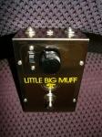 Little Big MuffP1020481